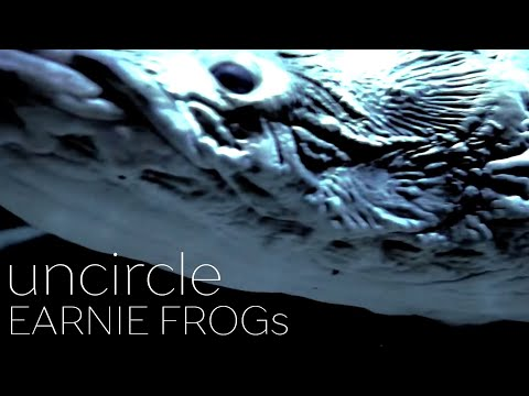 [Music Video]uncircle (アンサークル) / EARNIE FROGs(アーニーフロッグス)