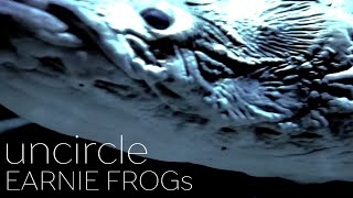 "Hello!! We are ""EARNIE FROGs"" from Japan. Our new music video was r..."