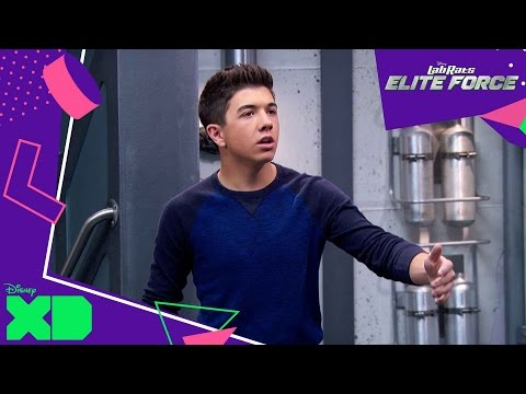 Lab Rats: Elite Force   The Superhero Code   Official Disney XD UK