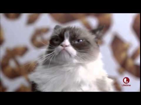 Grumpy Cat's Christmas Dance