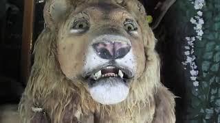 Automate électrique    Grand Lion