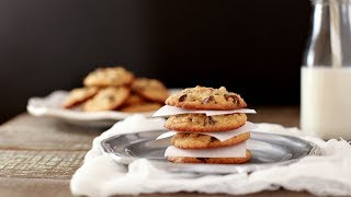 Best Chocolate Chip Cookies Paleo & Low Carb