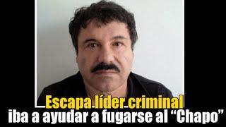 Capo iba a ayudar al Chapo a fugarse