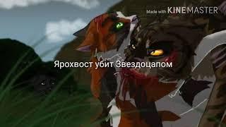 Смерть котов воителей