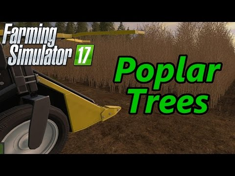 Farming Simulator 17 Tutorial | Poplar Trees