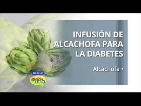 alcachofa para bajar de peso preparacion de gallos