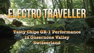 Electro Traveller - Granular Voices in the Magic Forest