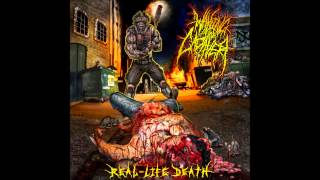 WAKING THE CADAVER -  LIFE LESSON
