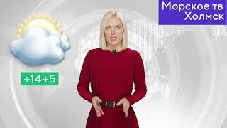 Прогноз погоды в городе Холмск на 8 июня 2021 года