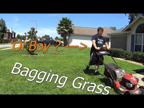 When Do I Bag Lawn Service Clippings? Running thru My Side Hustle Day