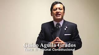 Programa 24 - El Tribunal Constitucional - Tribuna Constitucional - Guido Aguila 2017 Video