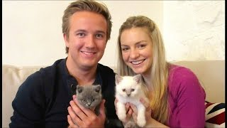 BRINGING OUR NEW KITTENS HOME (BRITISH SHORTHAIR BABY BOYS) | CHRIS & EVE