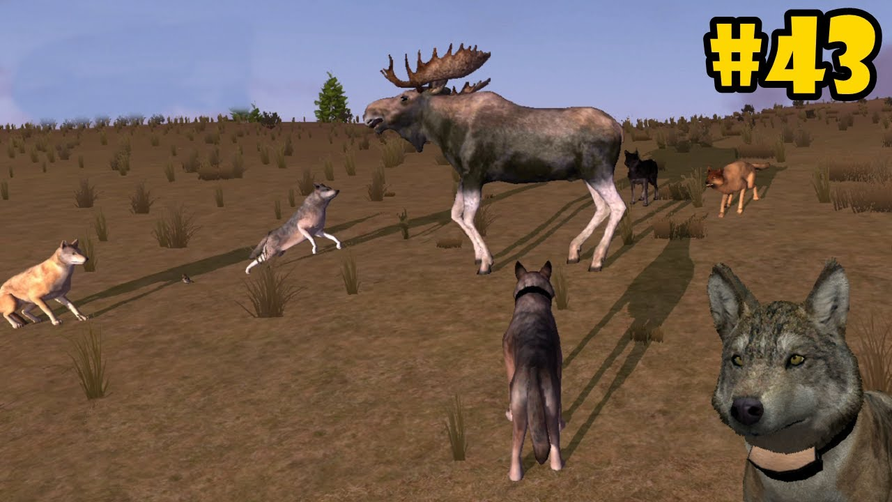 Wolf Quest Multiplayer - Hunting Bull Moose - Android/iOS ... - photo#16