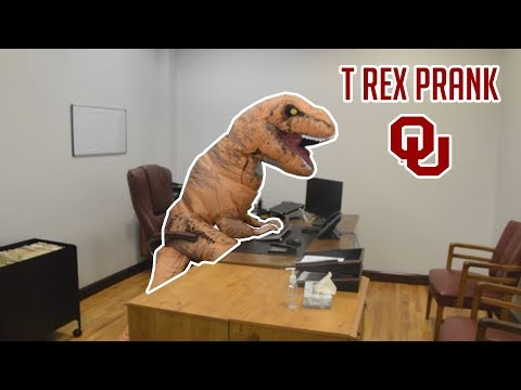 t-rex-takes-over-the-university-of-oklahoma!
