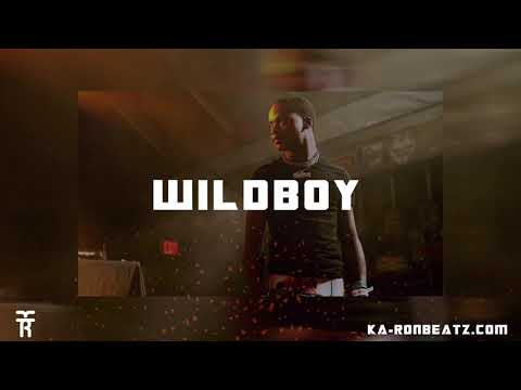 "[FREE] Calboy x Polo G Type Beat 2019 ""Wildboy"" [Prod. By KaRon]"