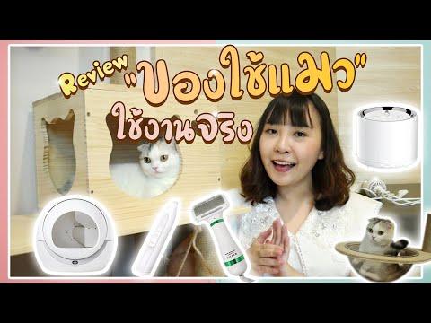 รีวิว ของใช้แมว ที่ใช้งานจริง !! No Sponsor จ้า : EP31