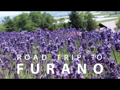 Road Trip to Furano富良野 | Boyfriend Adventure in Hokkaido
