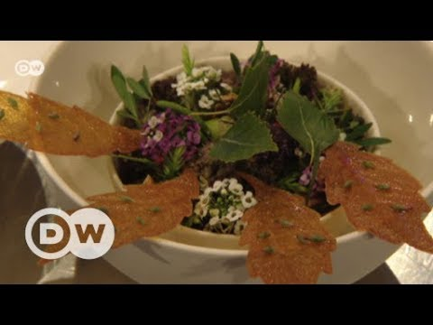 Meeting of international gourmet chefs | DW English