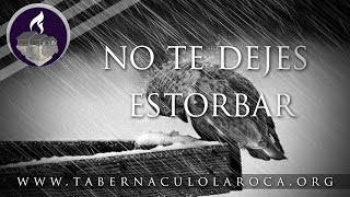 Pastor Carlos Morales - No te Dejes Estorbar