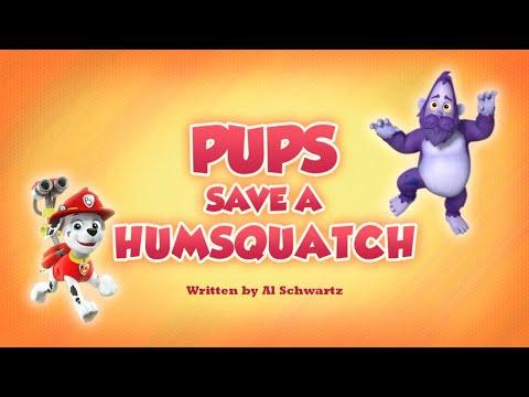 Видео: Pups Save a Humsquatch