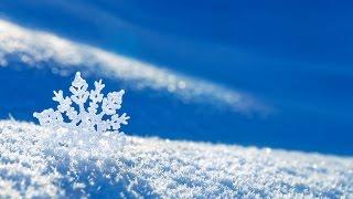 НОВАЯ ПЕСНЯ Юлии Славянской 'Стихи на снегу'. Слова монаха Салафиила (Филипьева)