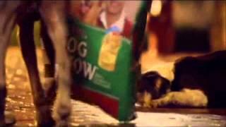 Demo Locucion Camila Peroni. Dog Chow Thumbnail