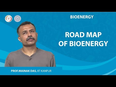 Road Map of Bioenergy
