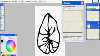 Как сделать четкую обводку изображения по контуру в Paint.NET