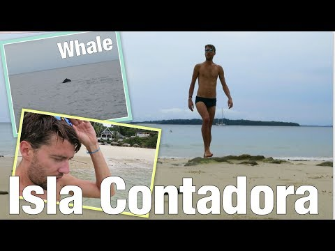 I SAW A WHALE ! | Ancón Hill, ISLA CONTADORA, Bike Tour | Panamá Vlog No. 6