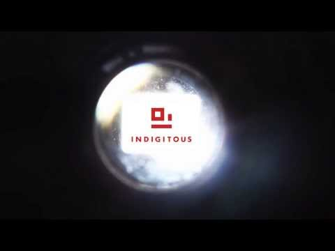 Welcome to Indigitous