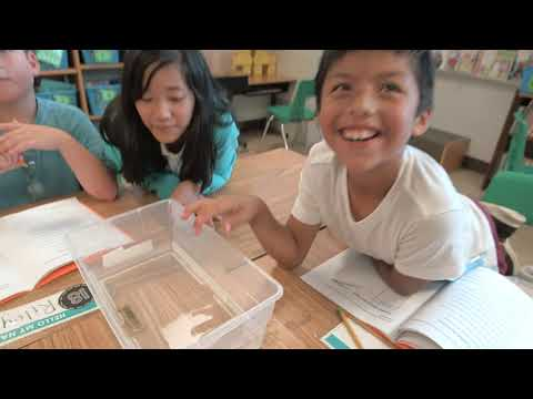 Minors Lane Elementary School Showcase Video