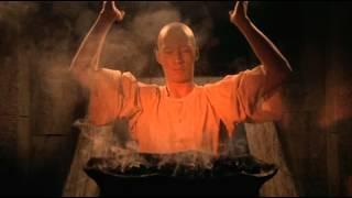 EL TIGRE Y EL DRAGÓN Kung Fu Shaolin Kwai Chang Caine