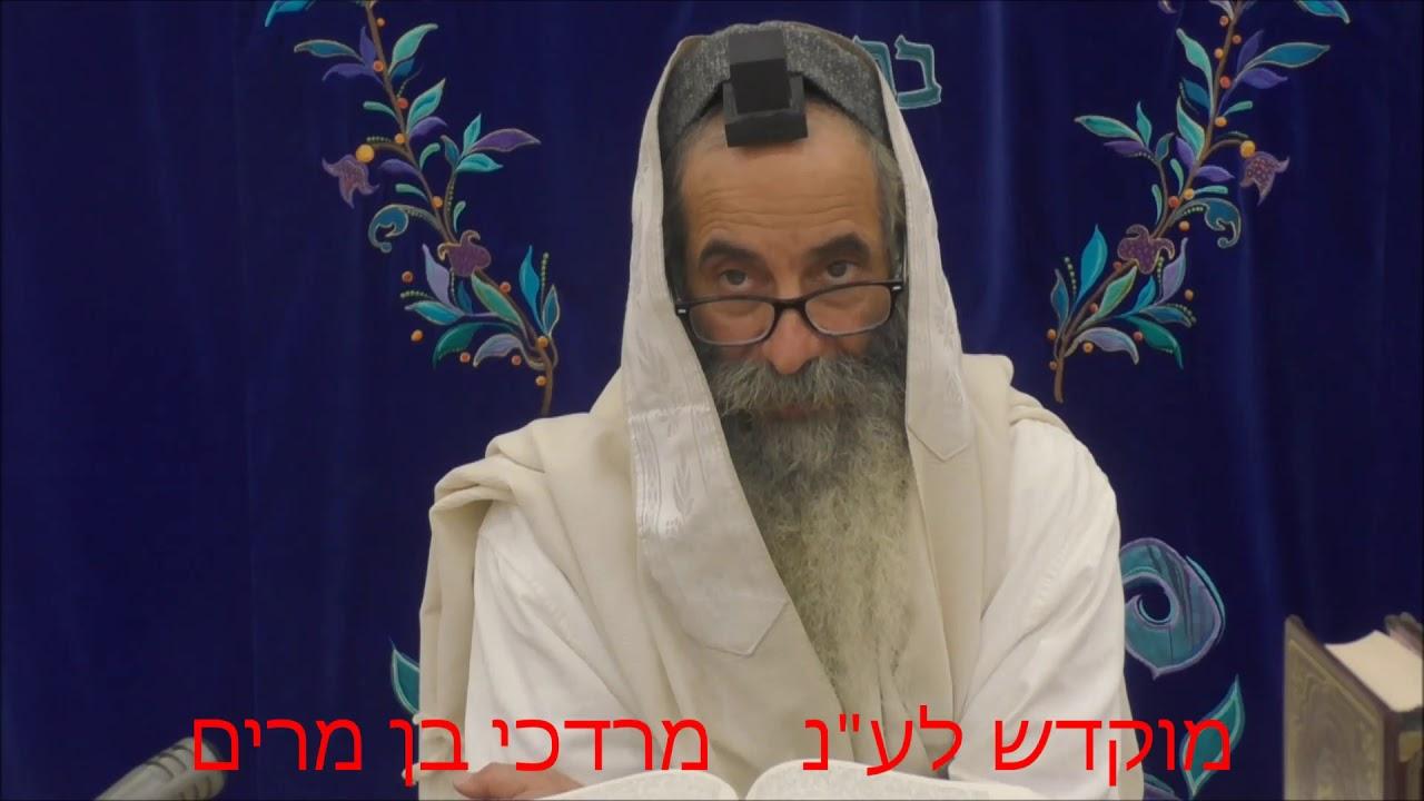 זוהר בקטנה פרשת כי תצא ליום א' מפי רבי יעקב יוסף כהן