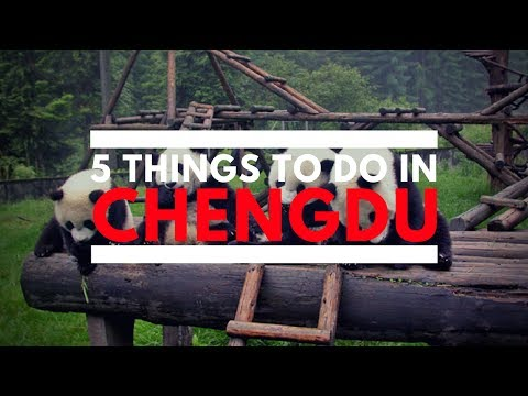 5 Things To Do In Chengdu