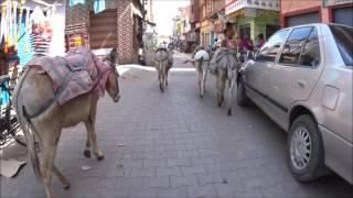 Индия Блог 22. Реальная видео прогулка по рынку в Индии со скрытой камерой. Индийский колорит