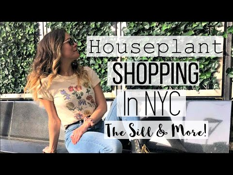 Houseplant Shopping Vlog in NYC! | The Sill Houseplant Haul!