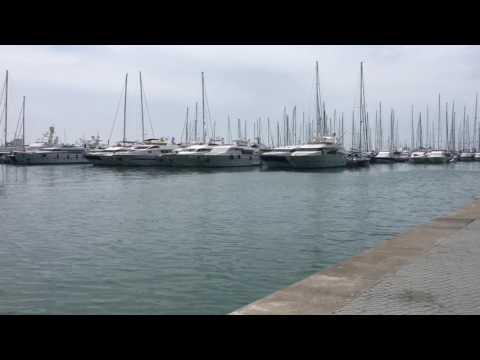 Palma Marina de port Mallorca