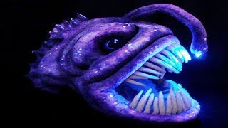 Top 10  CREEPY DEEP SEA Creatures Recently Discovered