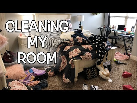 Cleaning My Room for the First Time this Year! | LexiVee03
