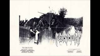Necrotomy Reek of Putrefaction