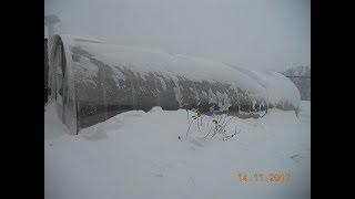 видео: Зимовка клубники. Снеговая нагрузка теплиц.