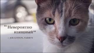 Город кошек - ТРЕЙЛЕР ФИЛЬМА 2017