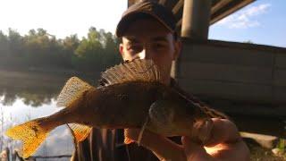Микроджиг спас рыбалку