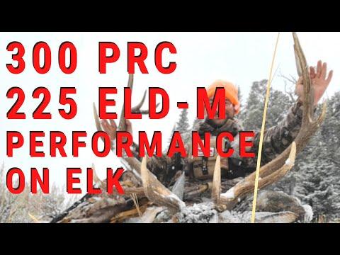 300 PRC PERFORMANCE ON ELK   HORNADY ELD-M
