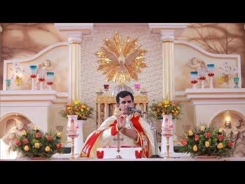 Download വിശുദ്ധ കുർബാന Holy Mass Malayalam |Syro Malabar | Fr.Naveen Ukken | 8281557326 Munippara church