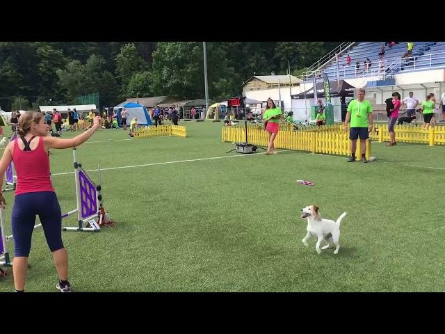 Raffaella e Abi jumping A Moravia Open 2018
