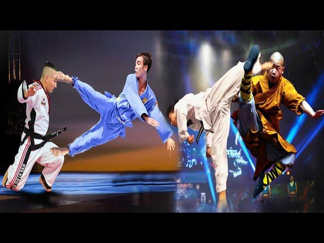 Taekwondo vs Kung Fu vs Hapkido vs Vovinam - Motivational Video