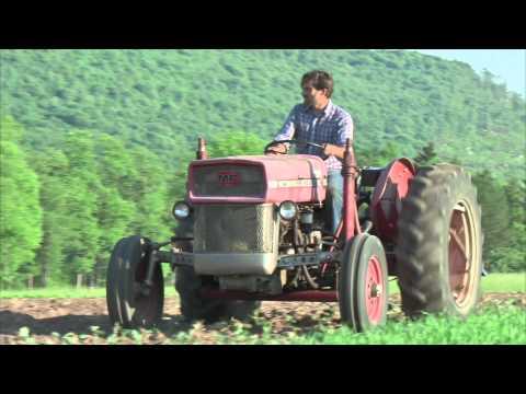 Sunshine & Steve, organic farmers