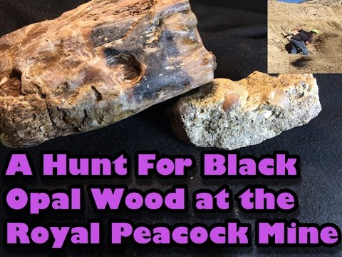 MINING AMERICA EP8  - Royal Peacock Opal Mine - Nevada - 5/15/2016 - 5 Star Lottery Spot Black Opal