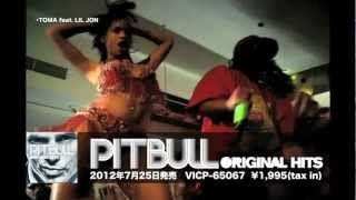 PITBULL - ORIGINAL HITS (PV ver.)